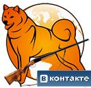 карело-финская лайка вконтакте